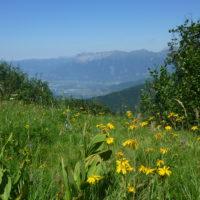 Sentier des Alpages
