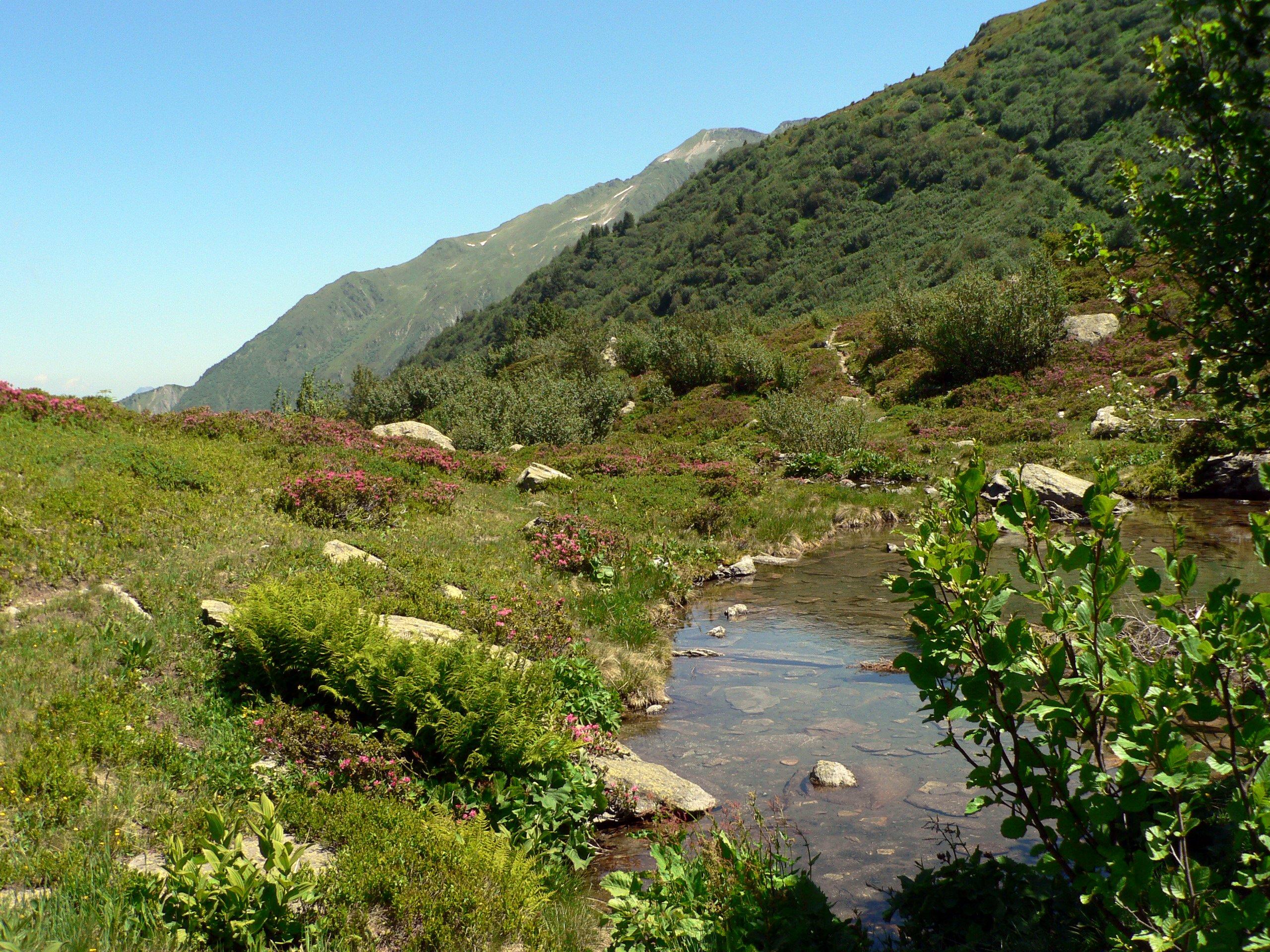 Image accueil de la page Sentier des Alpages du site Montsapey
