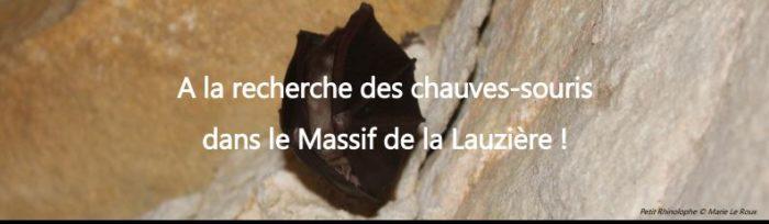 Enquête sur les chauves-souris dans le massif de la Lauzière
